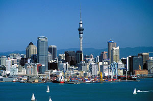 work or immigrate to Newzealand